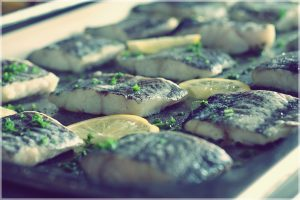Lady Cutler seafood 1